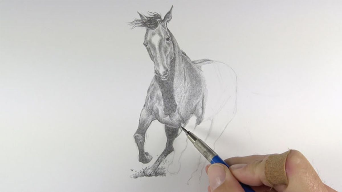 Learn exactly how to draw a horse with this video and step-by-step guide.