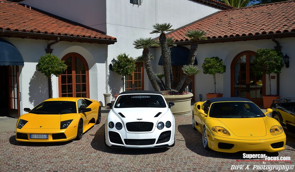 I would love to drive up to my home and see these beauties in my driveway