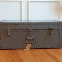vintage grey trunk