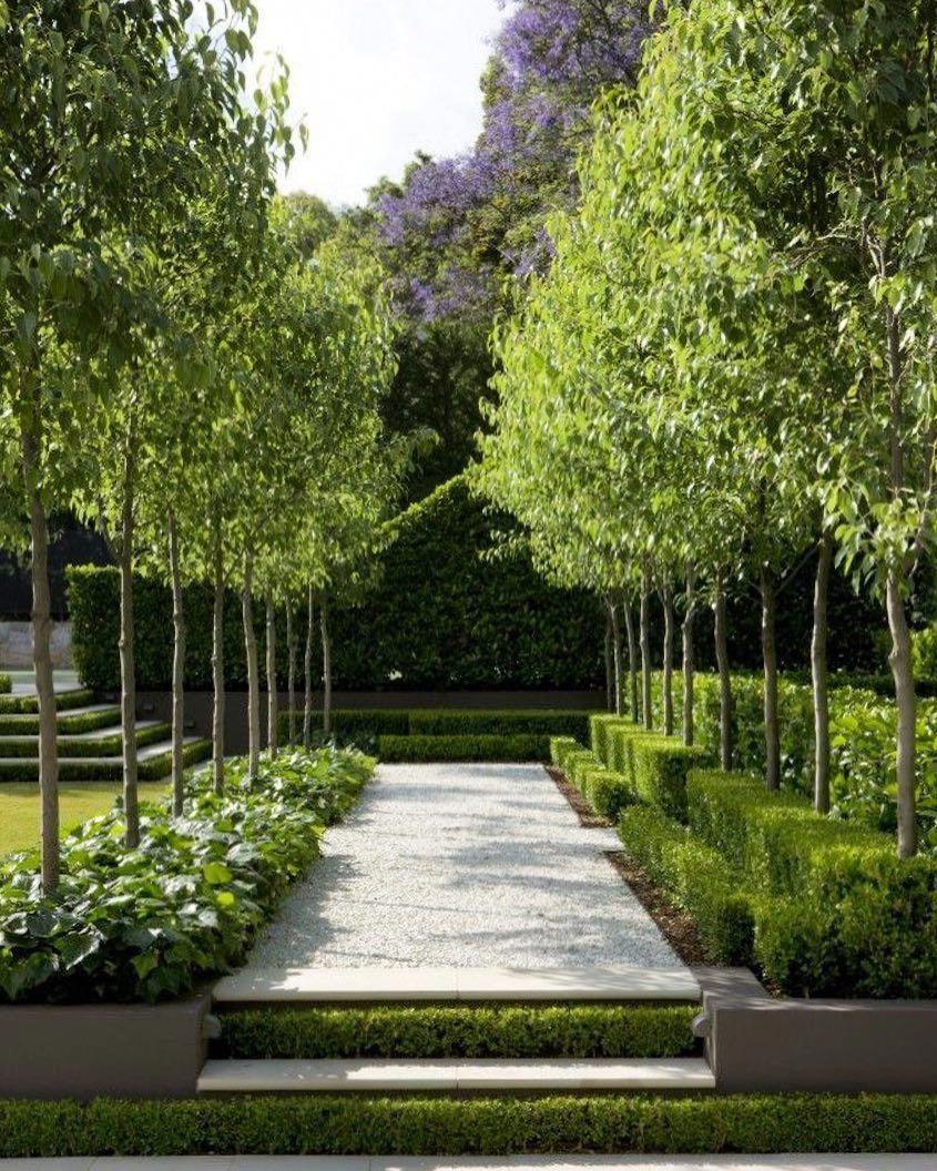 Pinterest Garden Love Rebecca #hedges #boxwood #beautiful