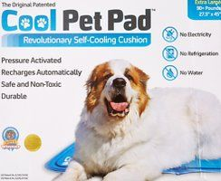 The Green Pet Shop Helps Cool Your Dog Down Quickly With Their