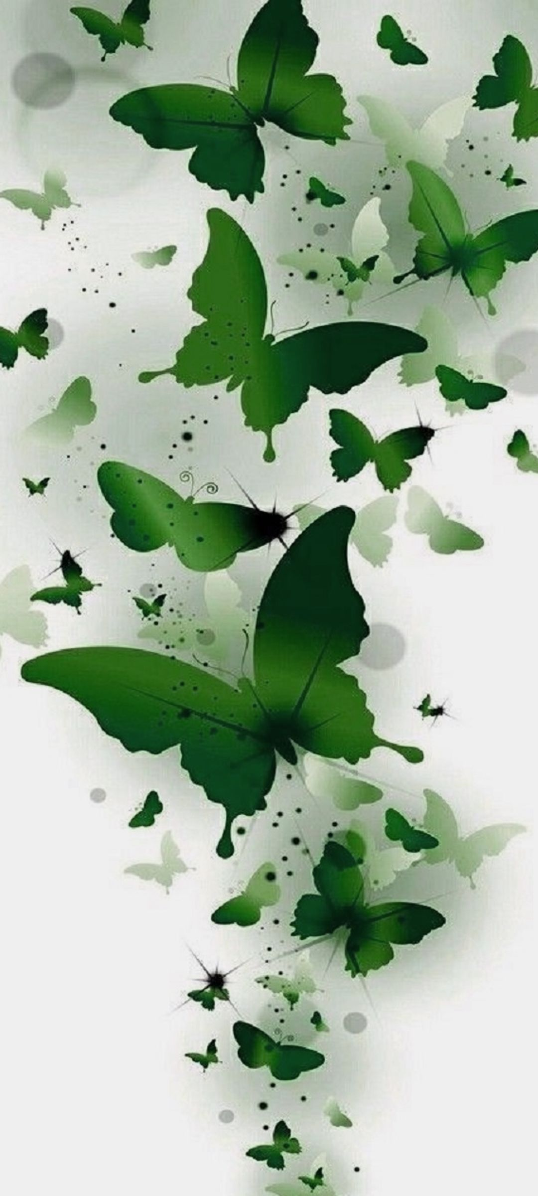 10 Wallpapers That Will Look Perfect On Your Xiaomi Redmi Note 9 Pro 06 Animated Green Butterflies Hd Wallpaper Desktop Wallpaper Smartphone Wallpaper