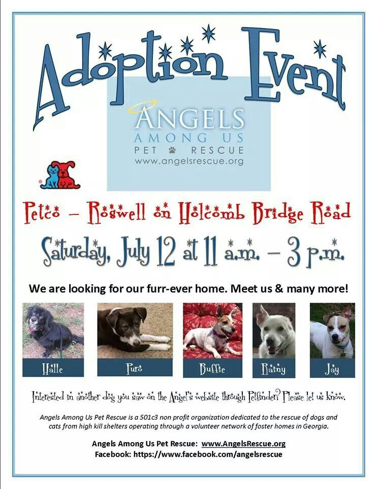 Adoptions At Petco This Weekend With Images Weekend Events