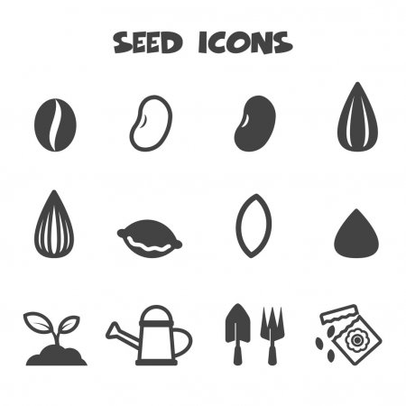 Seeds Growing Symbols Google Search