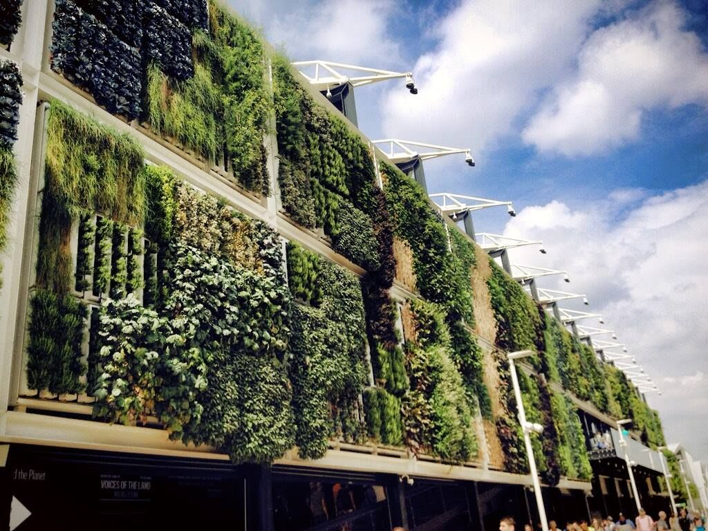 Check out what the @BrightAgrotech is doing in #Milan! @USAPavilion2015 #WorldPhotographyDay #ZipGrow pic.twitter.com/pyeBRV88va
