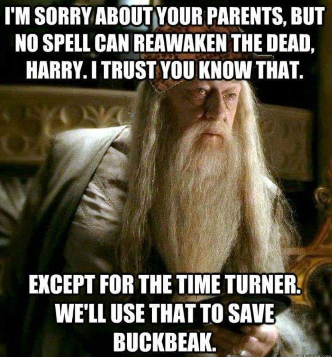 I Love Harry Potter But There Is The Odd Plot Hole Hey Ho Time Travel Is Always An Harry Potter Memes Hilarious Harry Potter Jokes Harry Potter Quotes Funny