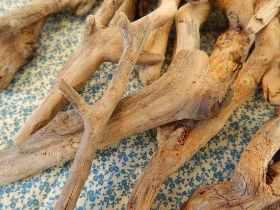 Bulk Lot Curvy Driftwood 10 Pieces 10-14 by SaltyGirlandLongDog