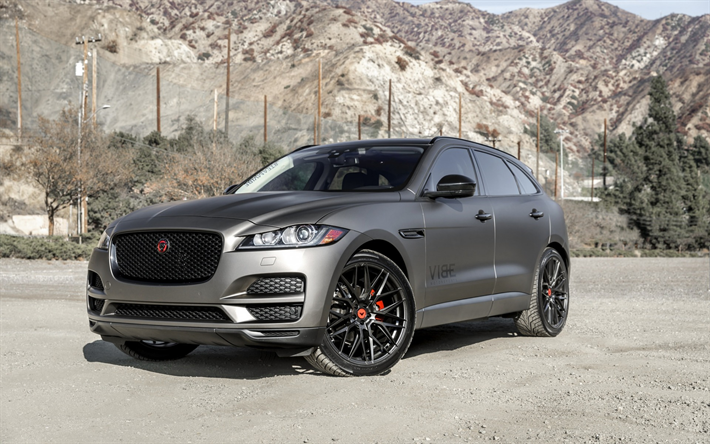 Download Wallpapers Jaguar F Pace 2019 Luxury Suv Gray Matte F