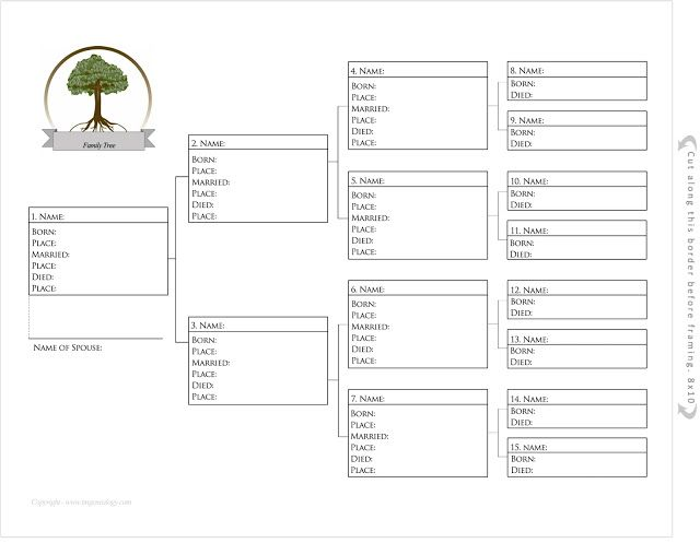 blank pedigree chart 4 generation