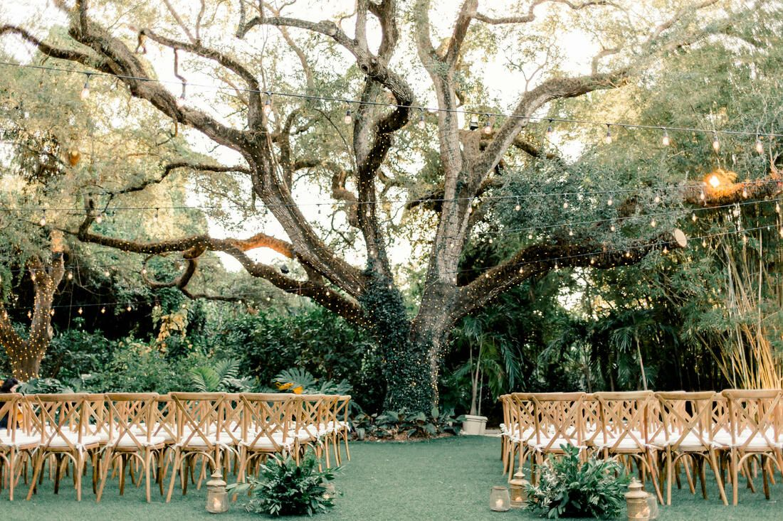 Villa Woodbine Wedding Venue In Miami Florida With The Famous Tree Of Life Natural Boho Rom Tree Wedding Ceremony Wedding Under Trees Villa Woodbine Wedding