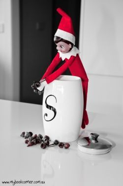 elf on the shelf with gum nuts