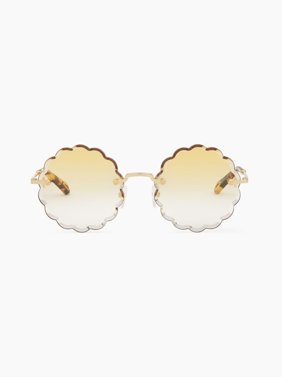 ac249dbc Chloe Rosie Sunglasses | Chloé Eyewear in 2019 | Sunglasses ...