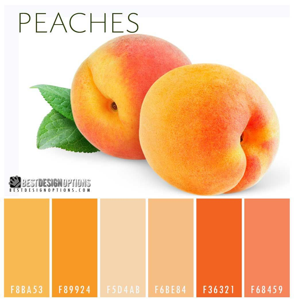 Peaches color palette sweet but sophisticated the color - Peach color paint palette ...
