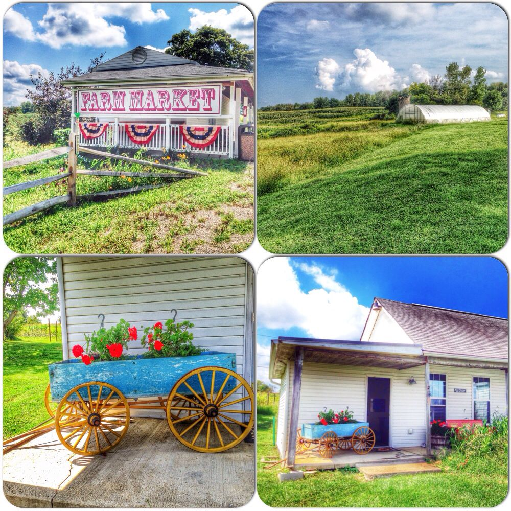 Cowgirl chow cooking classes at hellwig farm outside of