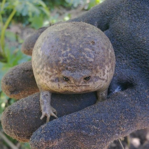"""No, I do not like the view from here either."" 