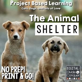 Your local community is going to open an animal shelter