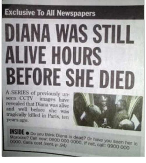 Related Image Newspaper Headlines Funny Headlines Human Stupidity