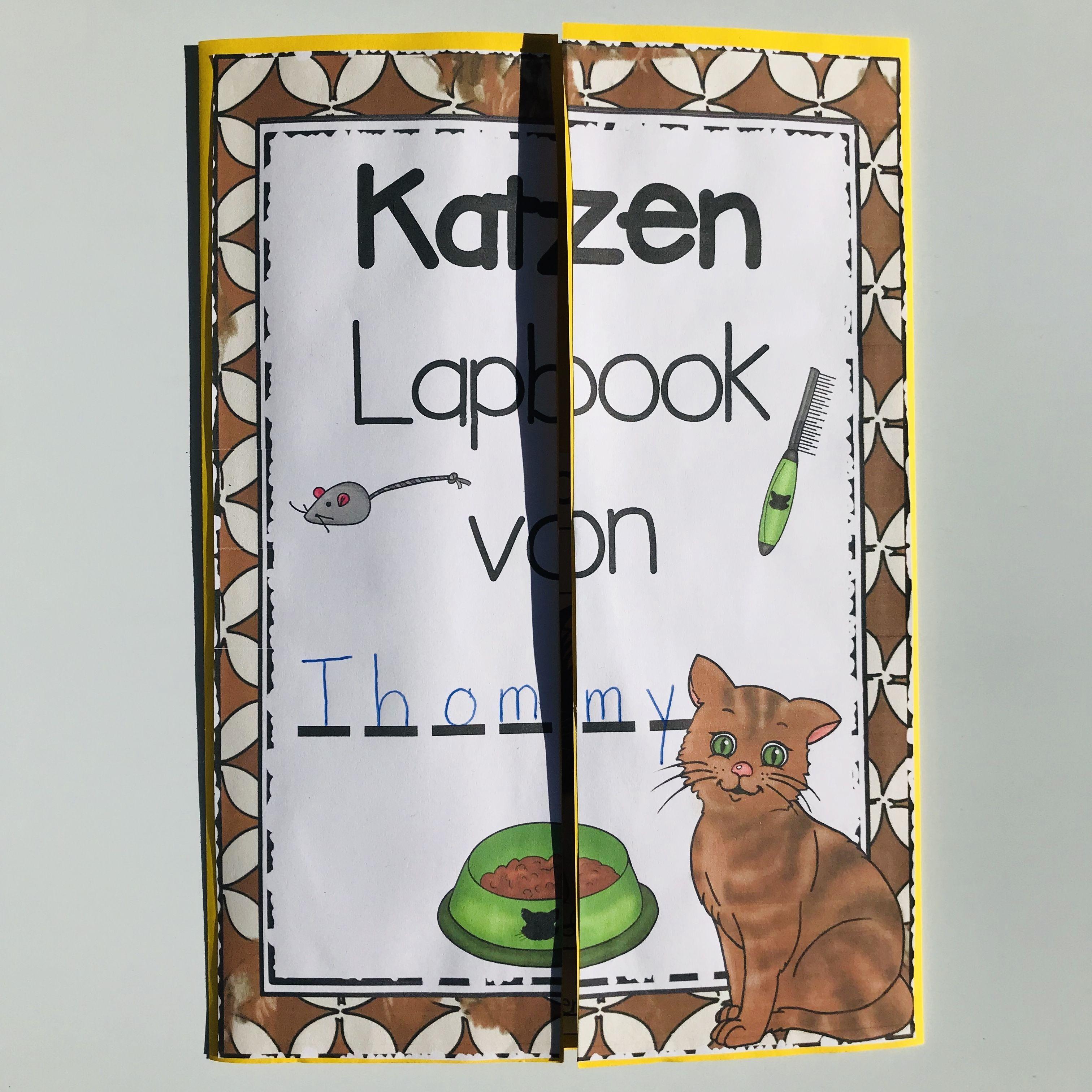 Lapbook Zur Katze The Growing Firsties Katzen