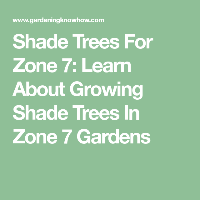 Types Of Zone 7 Shade Trees - Tips On Choosing Trees For ...