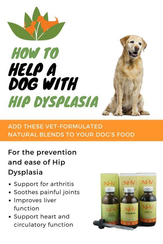 Hip Dysplasia Kit Hip Dysplasia Natural Remedies Pet Health