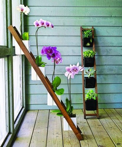 Great Way To Display Orchids Kiikku White Planter Asian Outdoor Planters