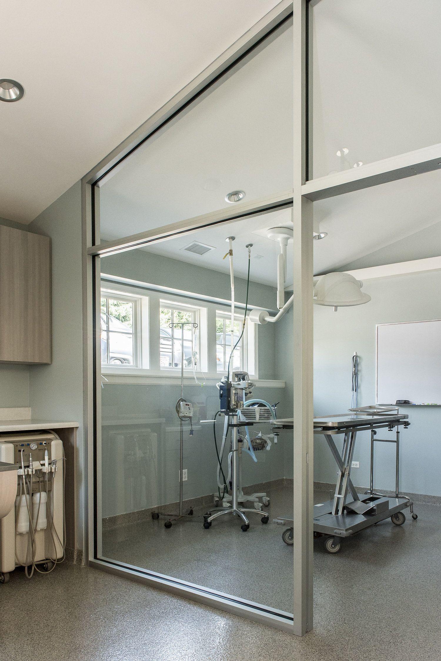 Pin de Matei Bulgar en vet clinic (con imágenes)