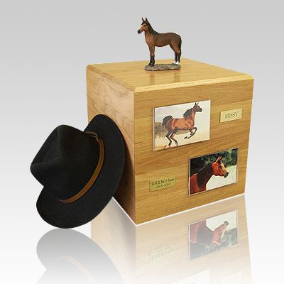 How Much Is It To Get A Horse Cremated