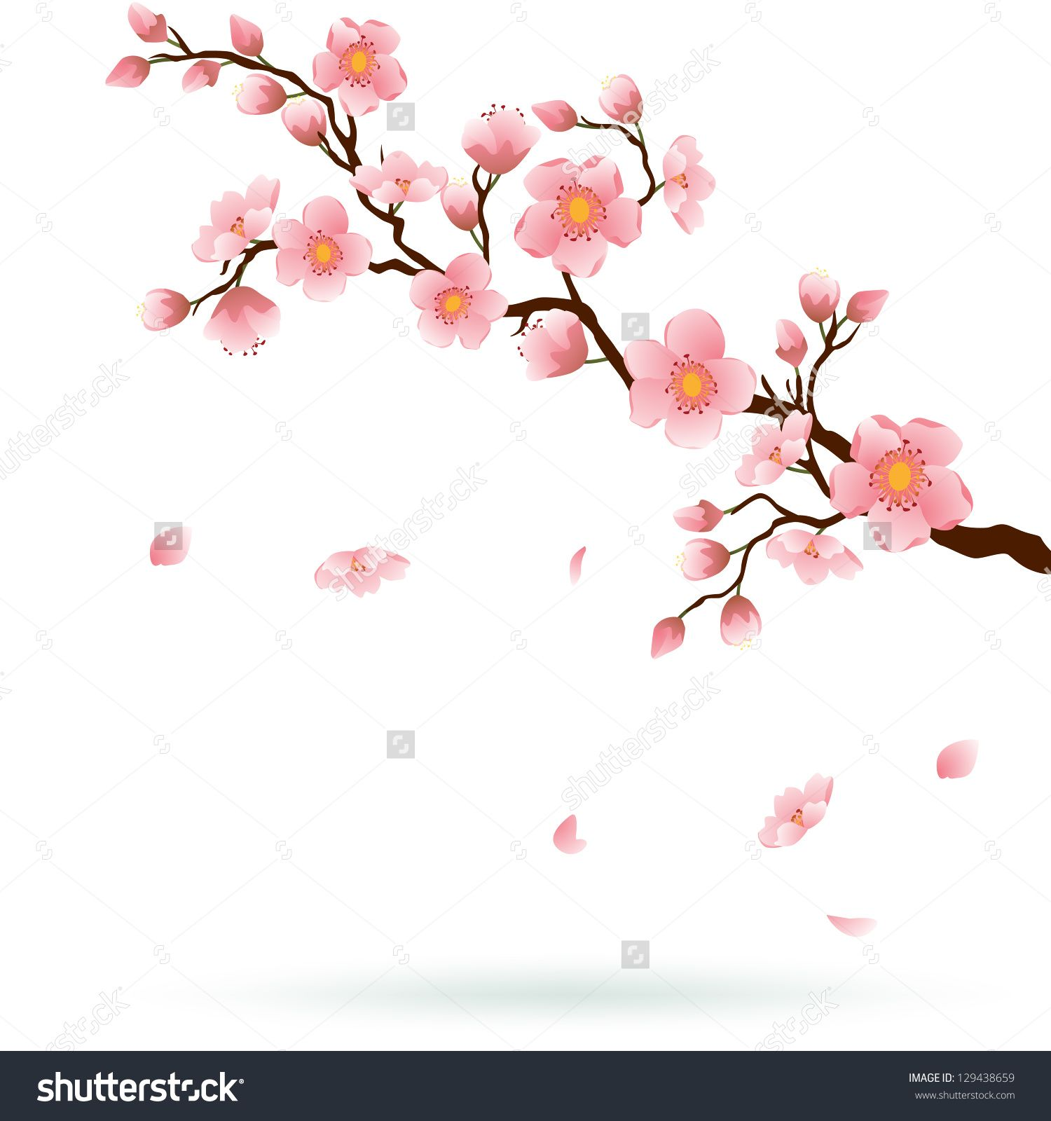 blossom tree stock vectors vector clip art shutterstock rh pinterest com Japanese Cherry Blossom Pencil Drawing Cherry Blossom Flower Drawing