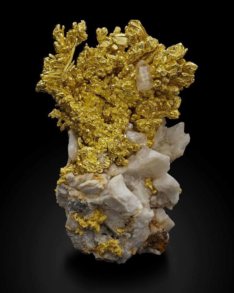 Native Gold On Quartz From Mockingbird Mine, Colorado Area