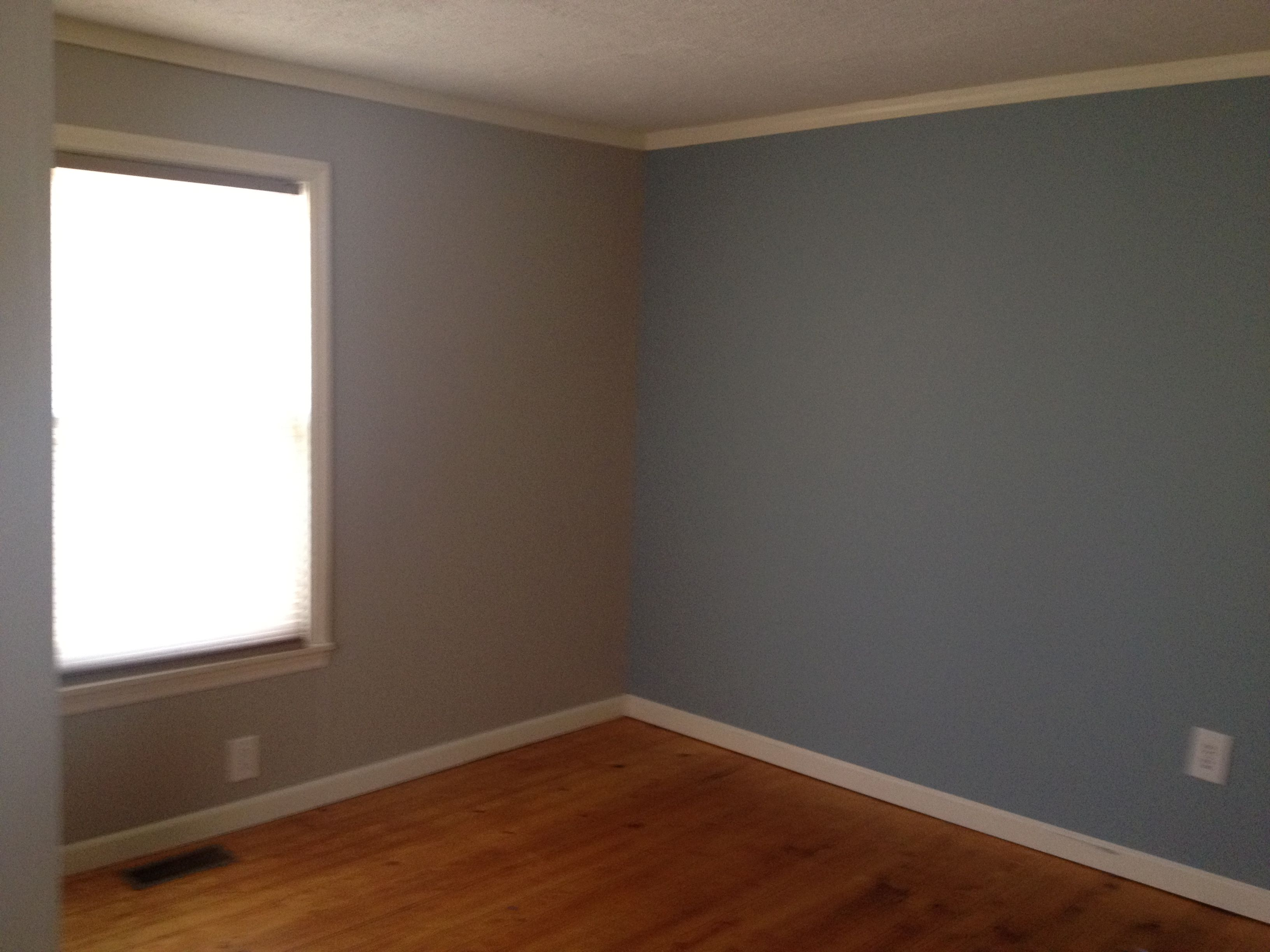 Master bedroom revere pewter with nimbus gray accent wall for What is accent color