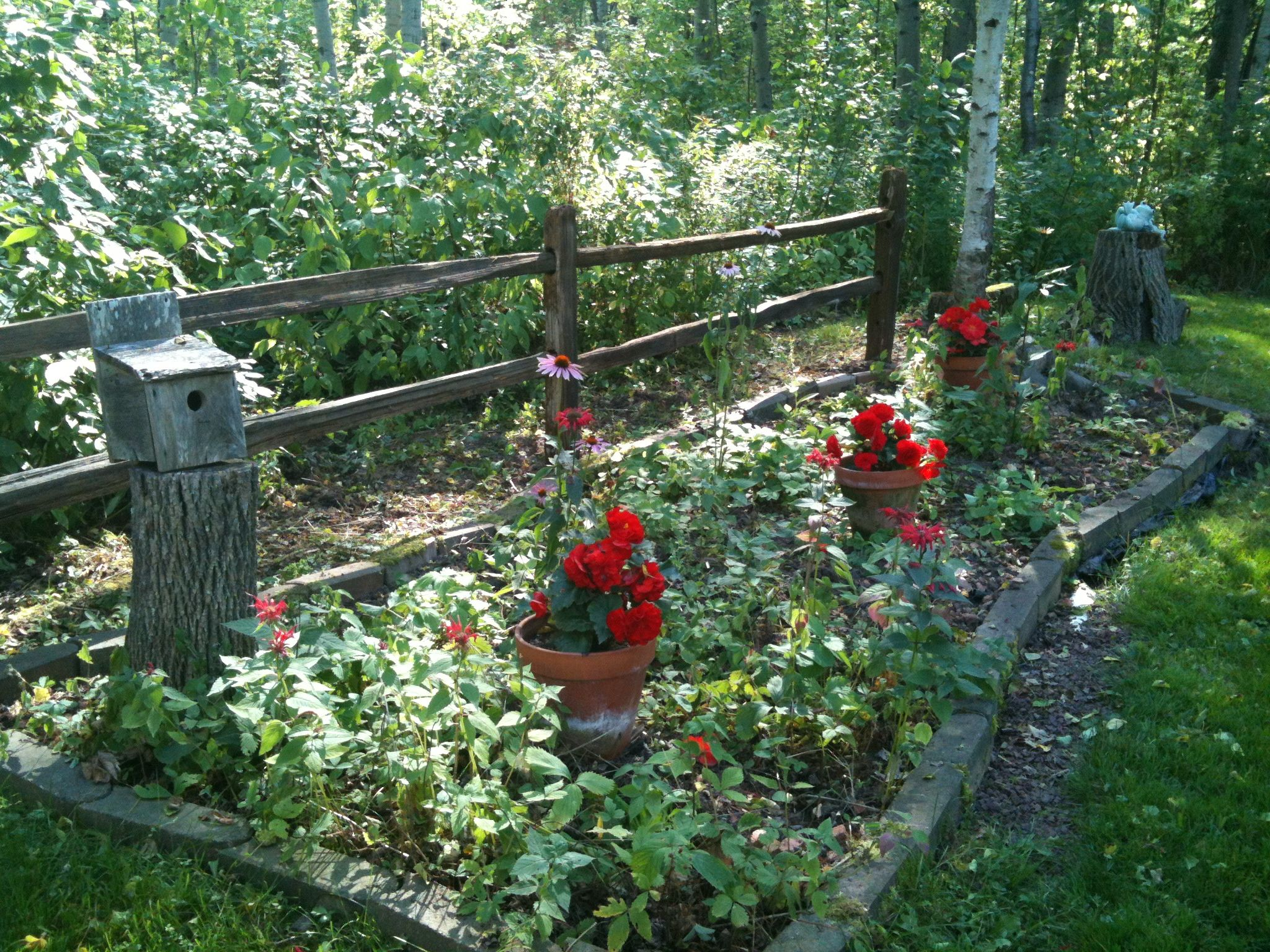 Cedar Split Rail Fence Garden Border Favorite Outdoor