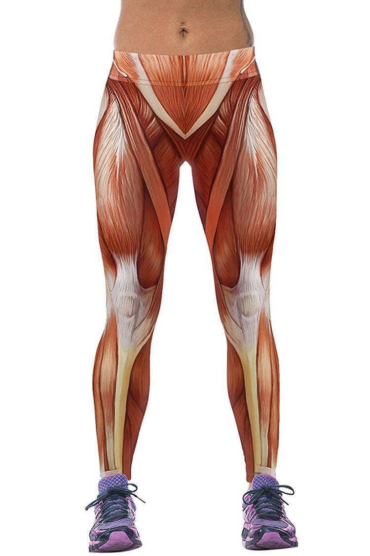 Anatomically Correct Muscle Leggings Pinterest Muscles And Workout