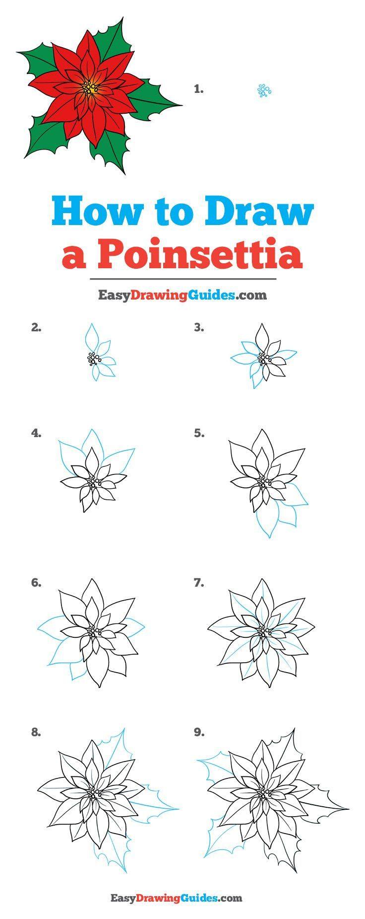 How To Draw A Poinsettia Really Easy Drawing Tutorial Flower Drawing Tutorials Drawing Tutorial Easy Easy Drawings