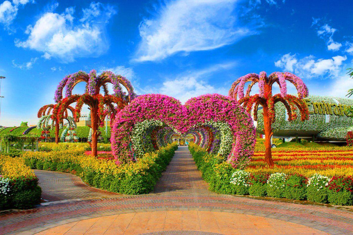 Conoce 'Dubai Miracle Garden', el jardín de flores