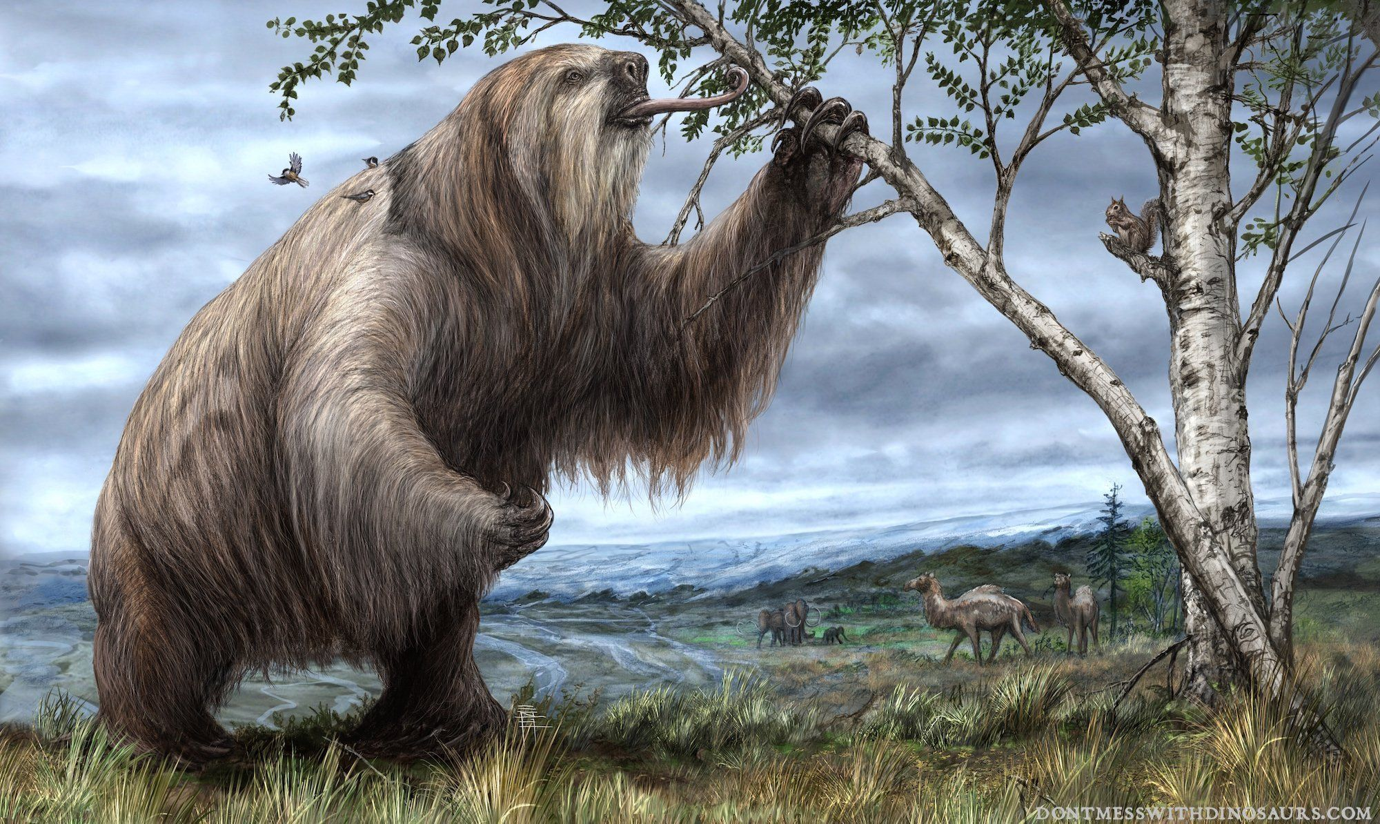 Giant Ground Sloth- Brian Engh #prehistoricanimals Giant ...