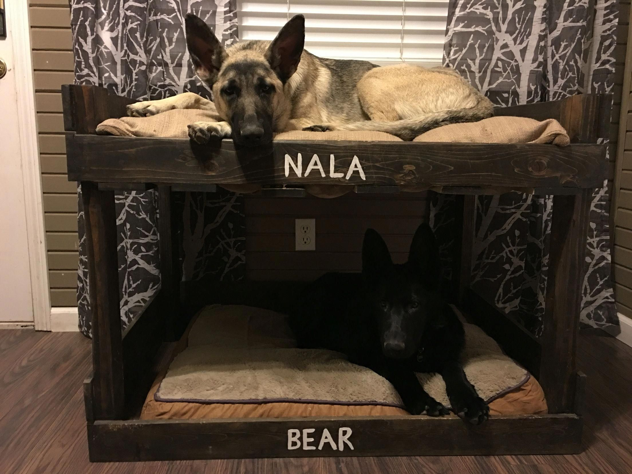 Two Story Dog Bed Dogcrateoutdoor Creative Dog Bed Dog Bunk Beds Cute Dog Beds