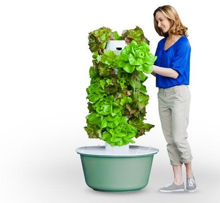 Aeroponic Gardening. Indoors Or Outdoors. Water Saving. No Pesticides.  Reduced Growth Time