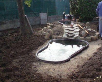 Le forum de Passion Bassin - bassin de jardin, baignade naturelle