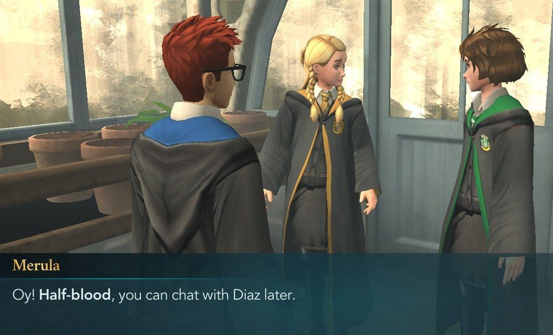 Hogwarts Mystery Merula Hogwarts Mystery Hogwarts Mystery