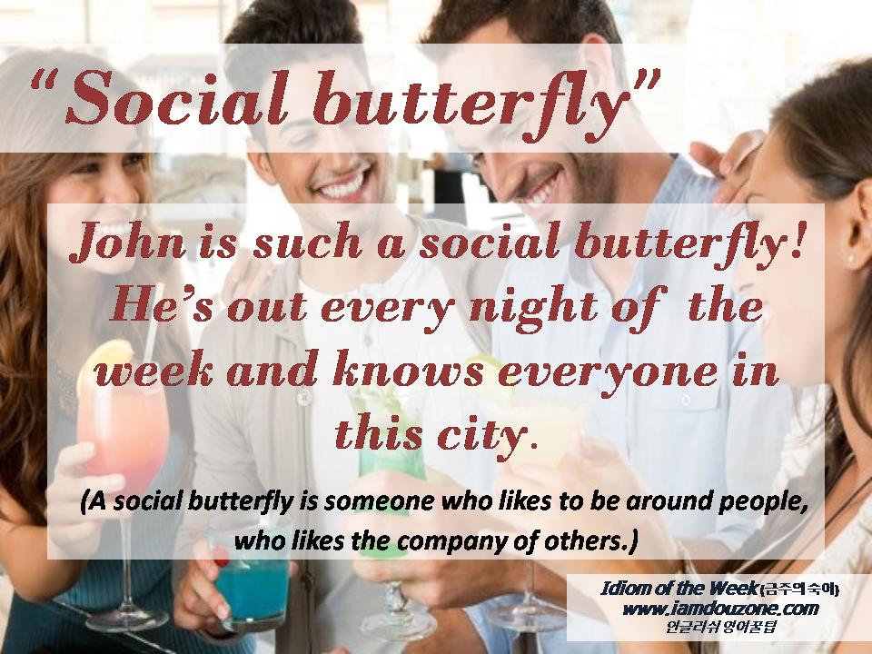 Idiom Of The Week 금주의 숙어 Social Butterfly Social Butterfly Idioms Social