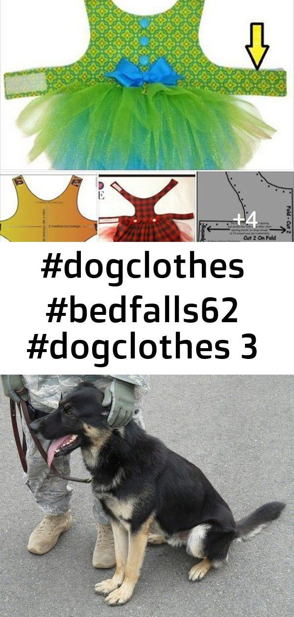 #dogclothes #bedfalls62 #dogclothes 3 #bedfalls62 #dogclothes #bedfalls62 #dogclothes A personal protection dog is trained to guard you at all times. Not all dogs are suited for this job, and not all dogs should even be asked to do this job. Find out if personal protection training is right for your dog, and how to go about it. Ships Ahoy Sailor Dog Dress Pattern 1623 by SofiandFriends #dogstuff Here's How You Can Stop Your Dog Pulling On The Leash. These training tips will help you overcome lea #bedfalls62