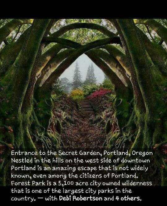 Secret Garden in Portland, OR #travel #traveldestinations #oregon #traveldestination