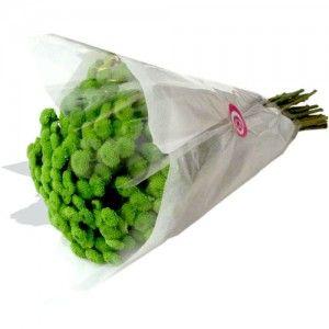 Molho de Margaridas Verdes