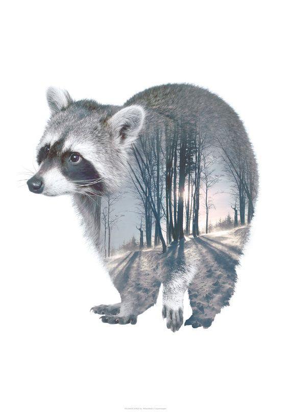 Raccoon Animal Double Exposure Art Print Faunascapes By Whatwedo Raccoon Art Animal Wall Art Animal Art