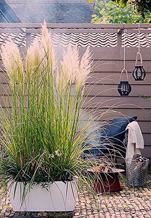 Photo of Gartengestaltung – 11 einfache Ideen zum nachahmen | homify