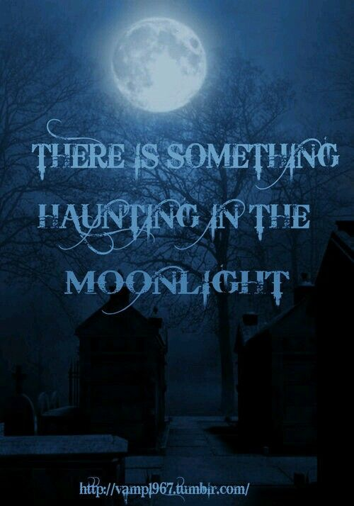 Explore Halloween Quotes, Happy Halloween, And More! Bleu. Halloween QuotesHappy  HalloweenHalloween PicturesSpooky ...