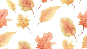 pumpkins and black cats diy fall pinterest fall wallpaper