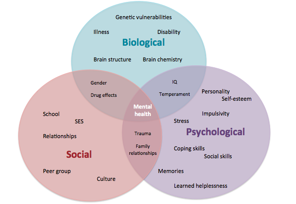 Biopsychosocial model counseling and therapy pinterest biopsychosocial model ccuart Gallery