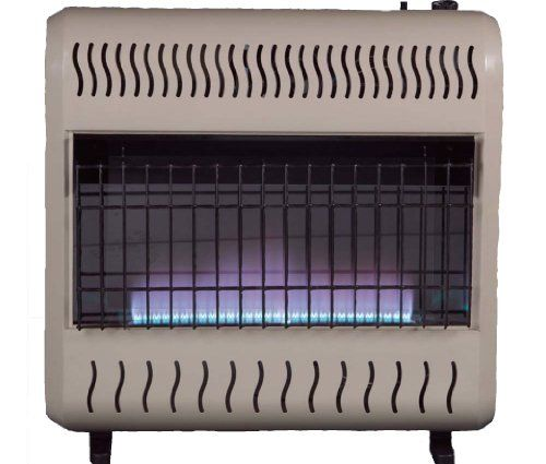 Sure Heat Wgsh30bfng Sure Heat 30 000 Btu Blue Flame Gas Space