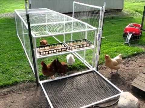 Chicken tractor pvc pipe make wide enough to fit for Chicken coop made from pvc